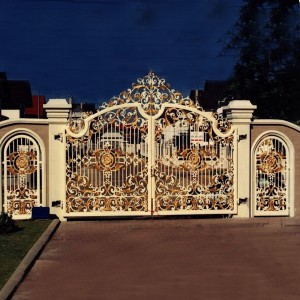 002 WROUGHT IRON ENTRANCE DOOR(1)