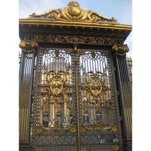 010 WROUGHT IRON ENTRANCE DOOR(1)
