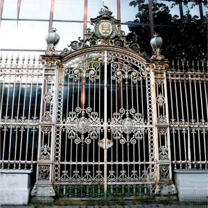 012 WROUGHT IRON ENTRANCE DOOR(1)